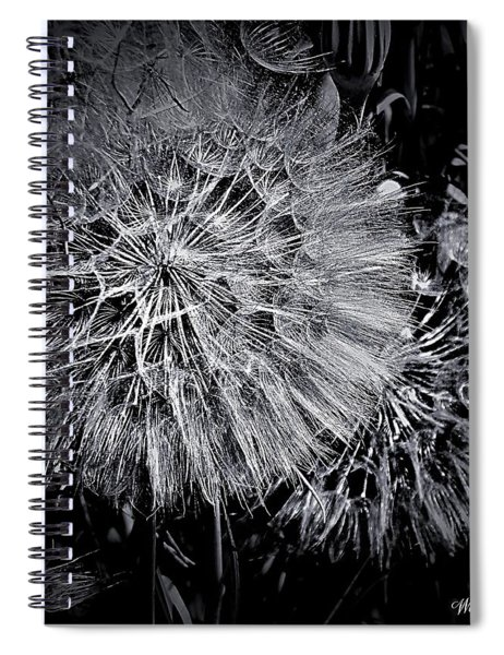 In Abstract Spiral Notebook