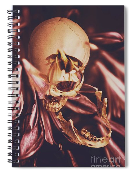 In Contrasts Of Soul Growth Spiral Notebook