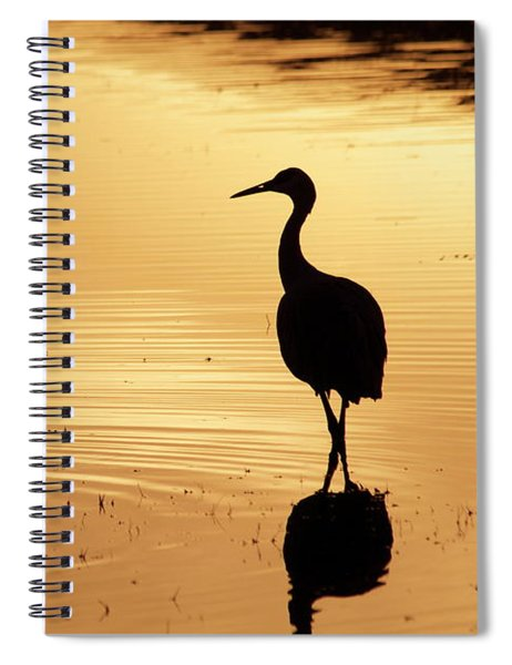 Spiral Notebook featuring the photograph In Love Again by Michael Lucarelli