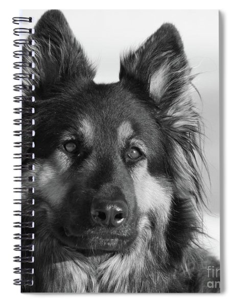 In Memory Of An Angel Spiral Notebook