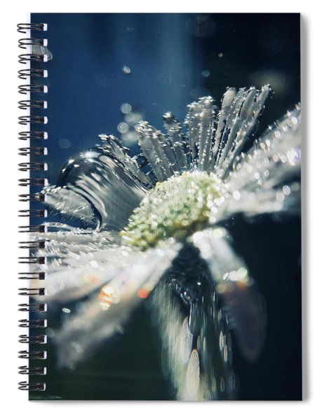 In The Big Blue Spiral Notebook