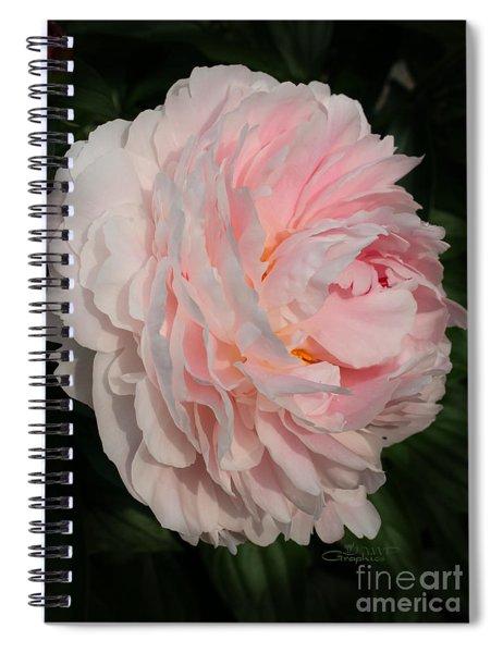 In The Evening Sun Spiral Notebook
