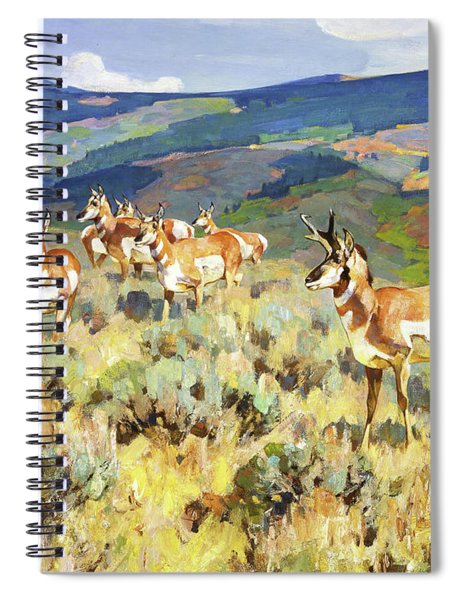 In The Foothills - Antelope Spiral Notebook