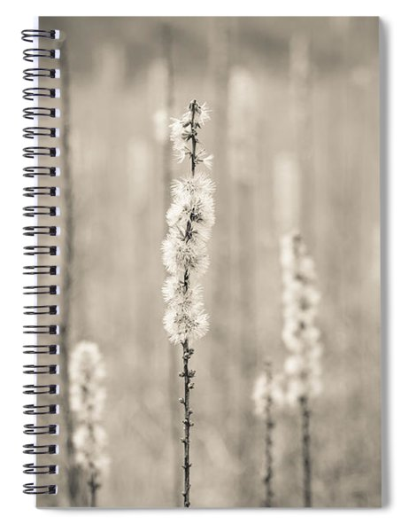 In The Wild Grass Spiral Notebook