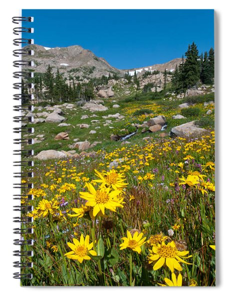 Indian Peaks Summer Wildflowers Spiral Notebook