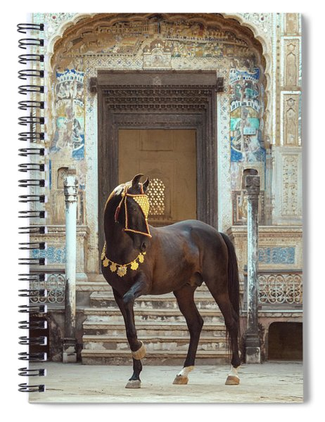 Indian Treasure Spiral Notebook