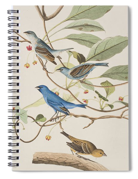 Indigo Bird Spiral Notebook