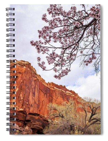 Individually Spiral Notebook