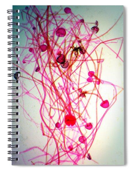 Infectious Ideas Spiral Notebook