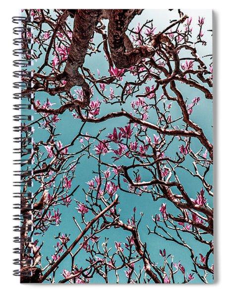 Infrared Frangipani Tree Spiral Notebook
