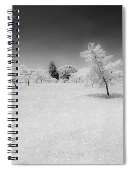 Infrared Peach Orchard Spiral Notebook