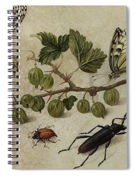 Insects And Butterfly Spiral Notebook