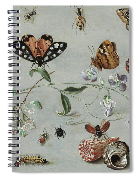 Insects, Butterflies And Clams Spiral Notebook