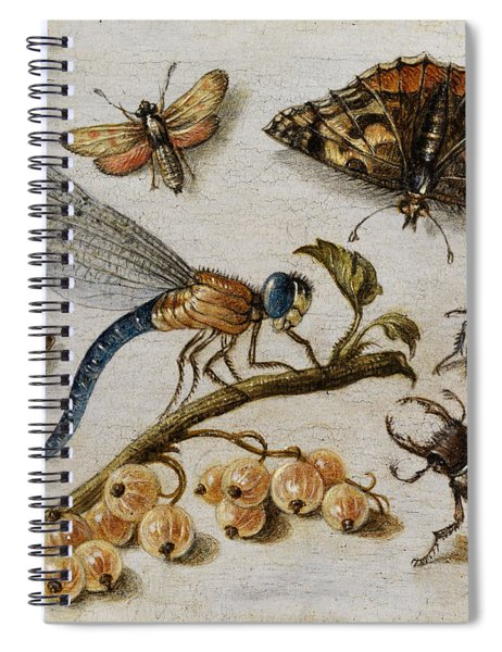 Insects, Currants And Butterfly Spiral Notebook