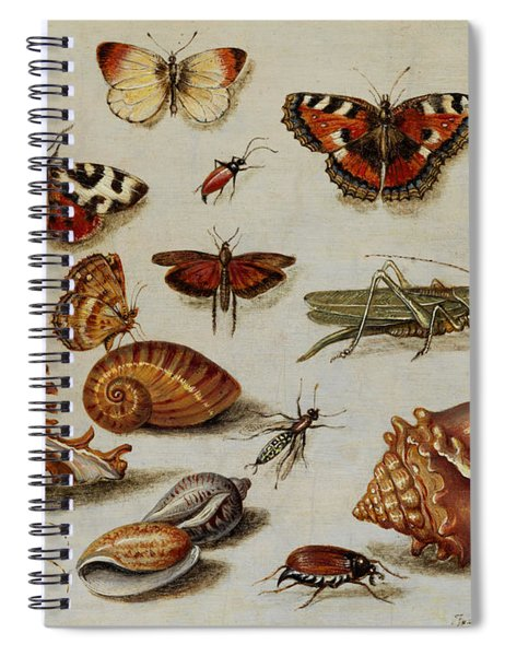Insects, Shells And Butterflies Spiral Notebook