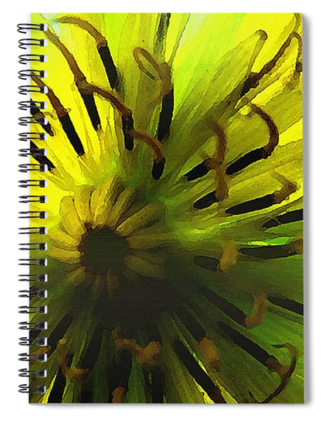 Inside A Yellow Goatsbeard  Spiral Notebook