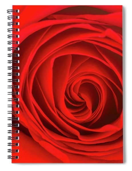 Inside The Red Rose Spiral Notebook