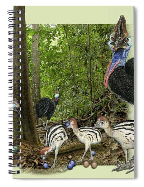 Zoo Nature Interpretation Panel Cassowaries Blue Quandong Spiral Notebook