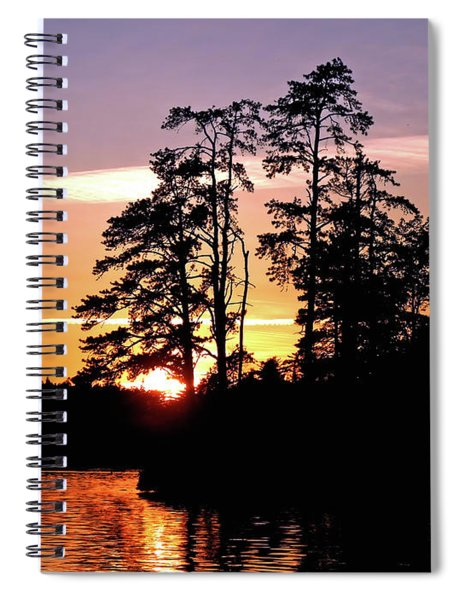 Into Shadow Spiral Notebook