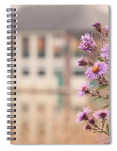 Into The Asters Spiral Notebook
