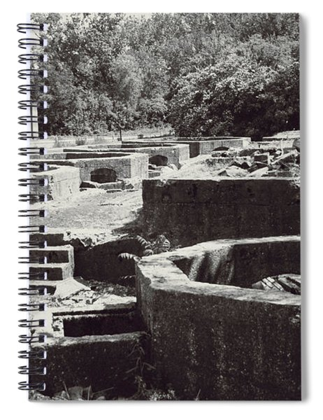 Into The Ruins 1 Spiral Notebook