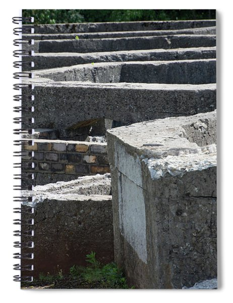 Into The Ruins 3 Spiral Notebook