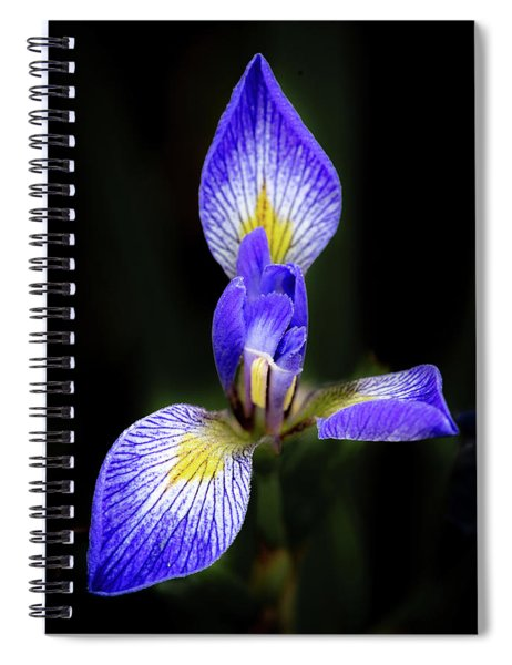 Iris #1 Spiral Notebook
