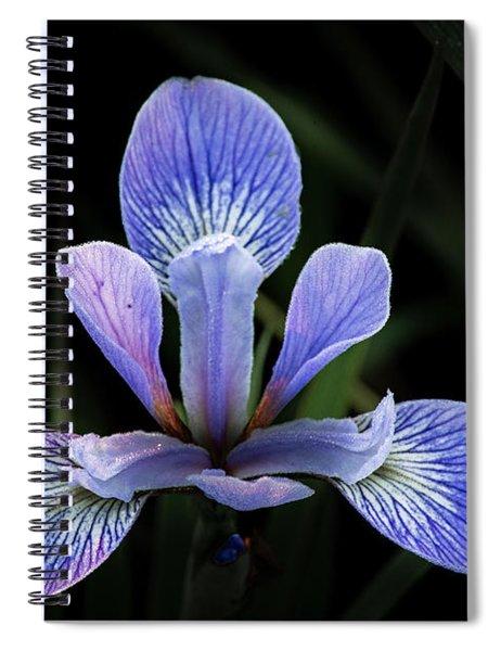 Iris #4 Spiral Notebook