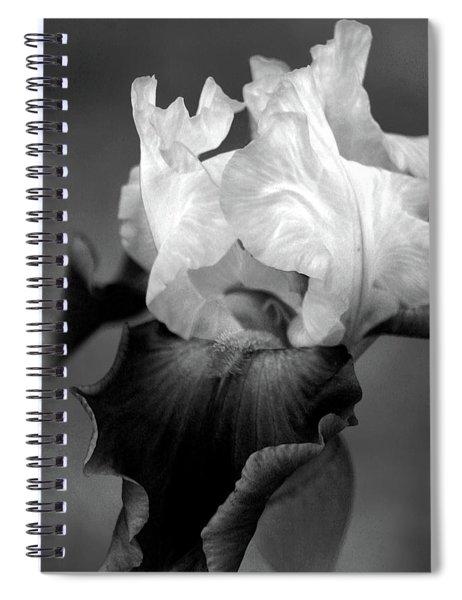 Iris 6621 H_5 Spiral Notebook