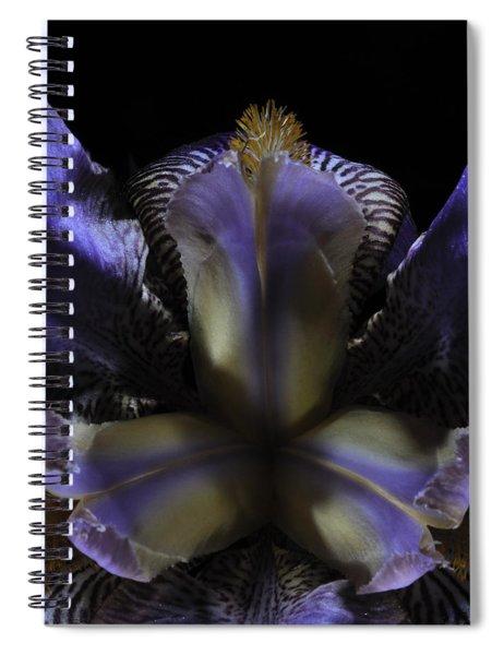 Iris Aglow Spiral Notebook