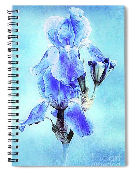 Iris Pair In Blue Spiral Notebook
