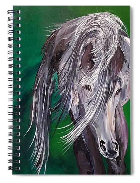 Irish Spring          20.3.12.2018 Spiral Notebook
