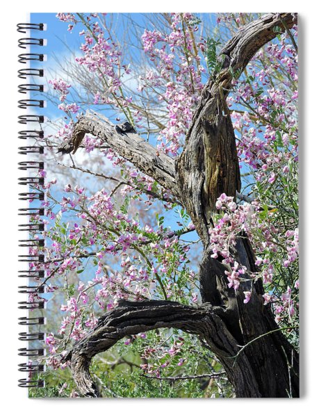 Ironwood In Bloom Spiral Notebook
