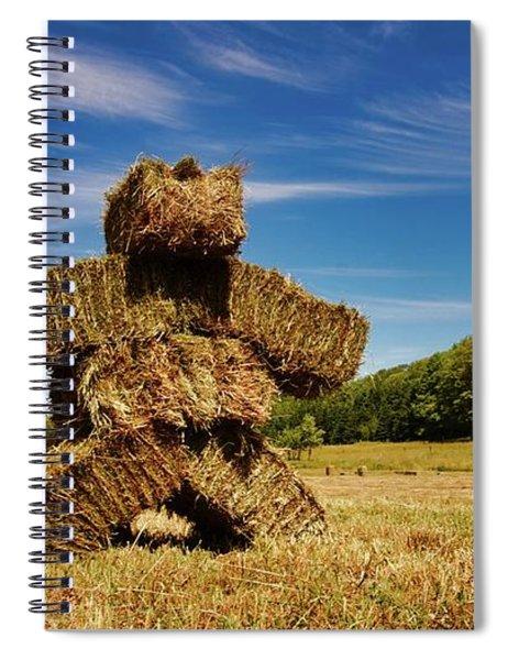 Island Strawman Spiral Notebook