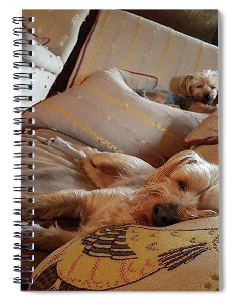 Hard Life Spiral Notebook