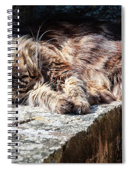 It's A Hard Life Spiral Notebook