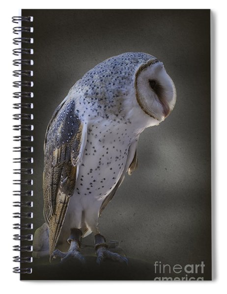 Ivy The Barn Owl Spiral Notebook