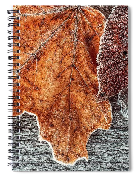 Jack Frost's Touch Spiral Notebook