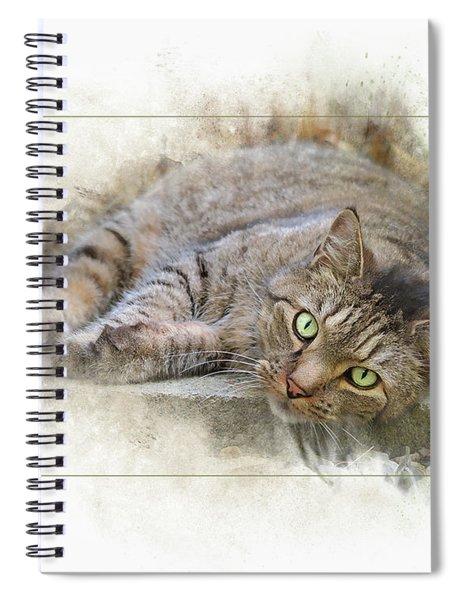 Jack Spiral Notebook