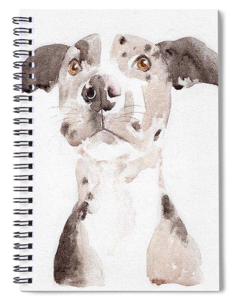 Jake Spiral Notebook
