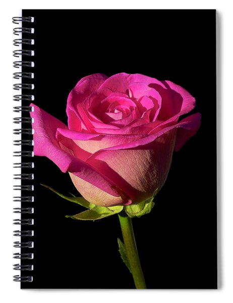 January Rose Spiral Notebook