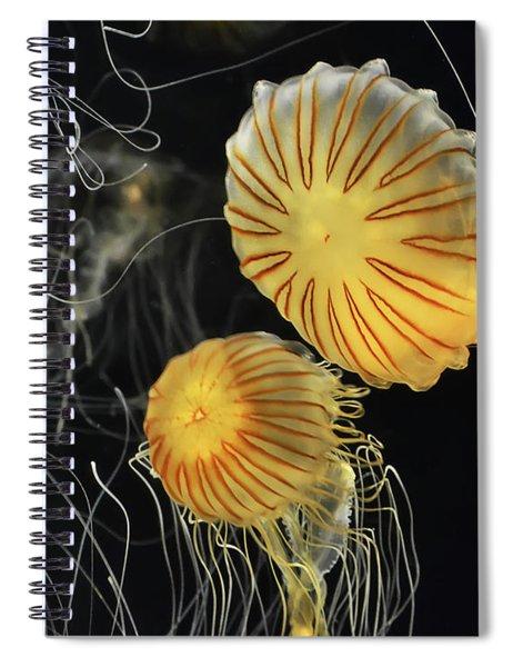 Jelly Fish In Flight, Looks A Bit Star Trek Ish  Spiral Notebook