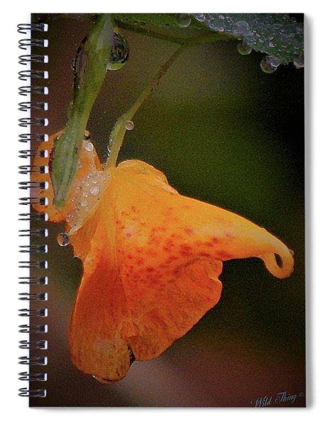 Jewelweed Bejeweled Spiral Notebook