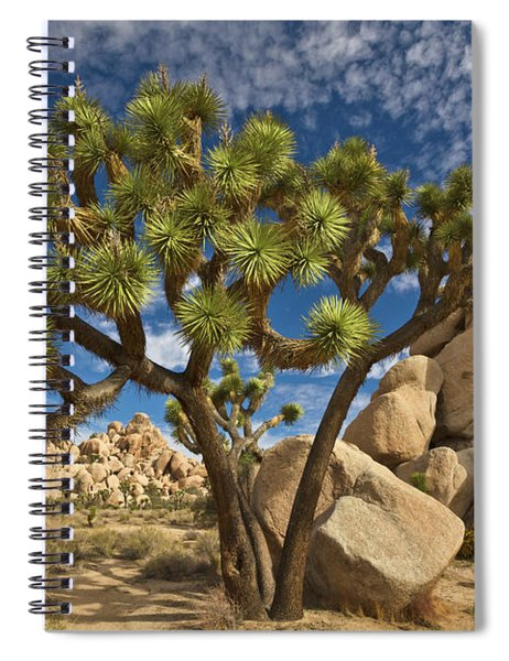Joshua Tree And Blue Sky Spiral Notebook