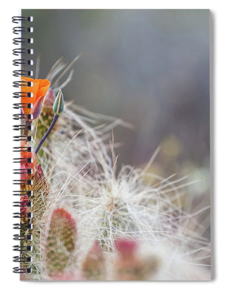 Joshua Tree Cactus And Flower Spiral Notebook