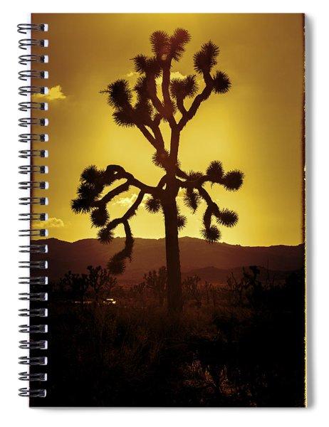 Joshua Tree Glow #2 Spiral Notebook