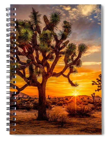 Joshua Tree Glow Spiral Notebook
