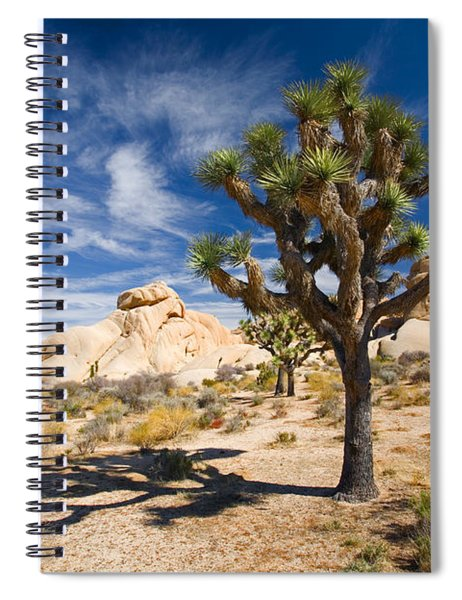 Joshua Tree With Shadow Spiral Notebook