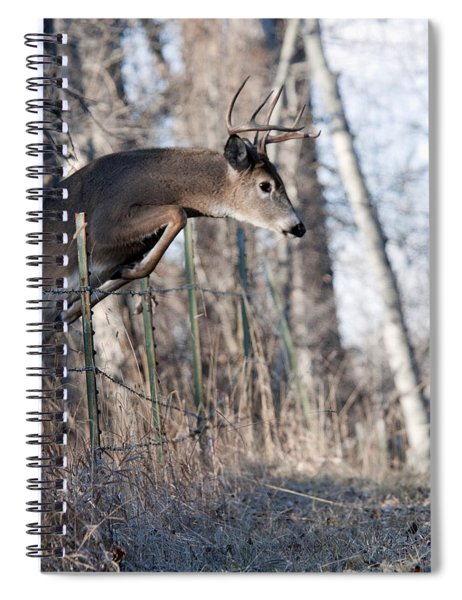 Jumping White-tail Buck Spiral Notebook