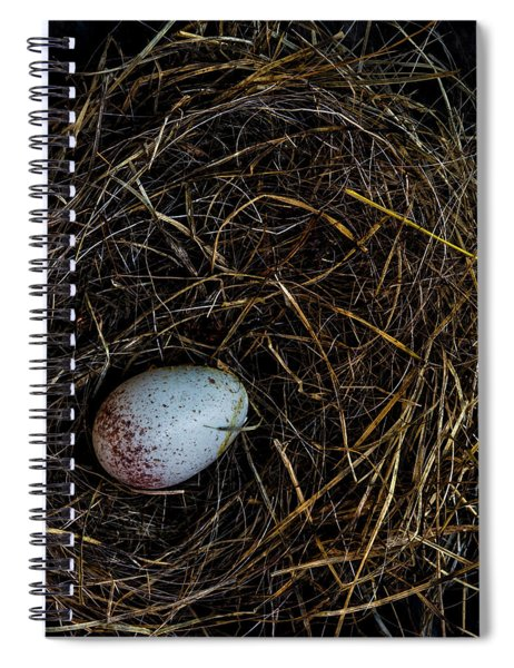 Junco Bird Nest And Egg Square Version Spiral Notebook